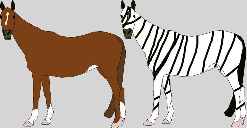 horsezebra